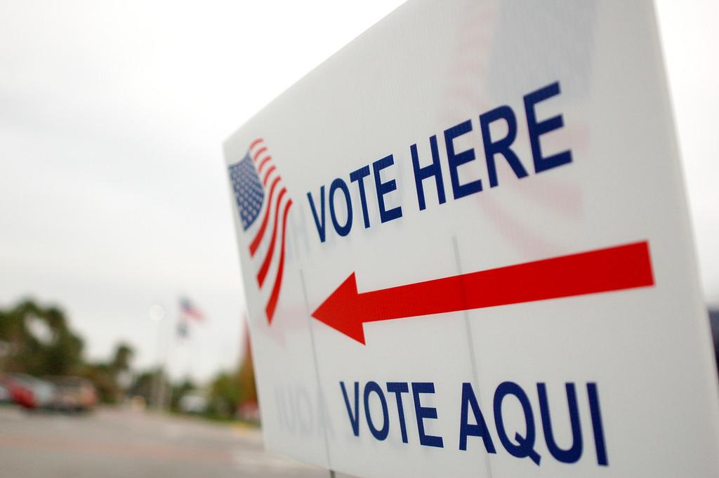 Do Write-In Votes Matter?