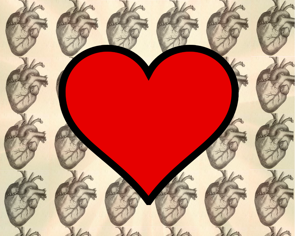 Why is the heart symbol so anatomically incorrect biocorpaavc Gallery